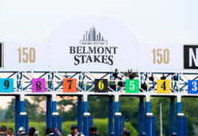 belmont stakes picks 2020